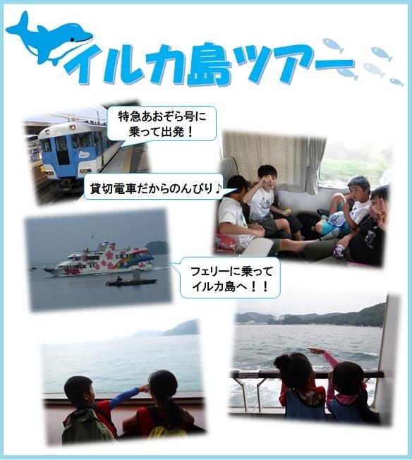 イルカ島①