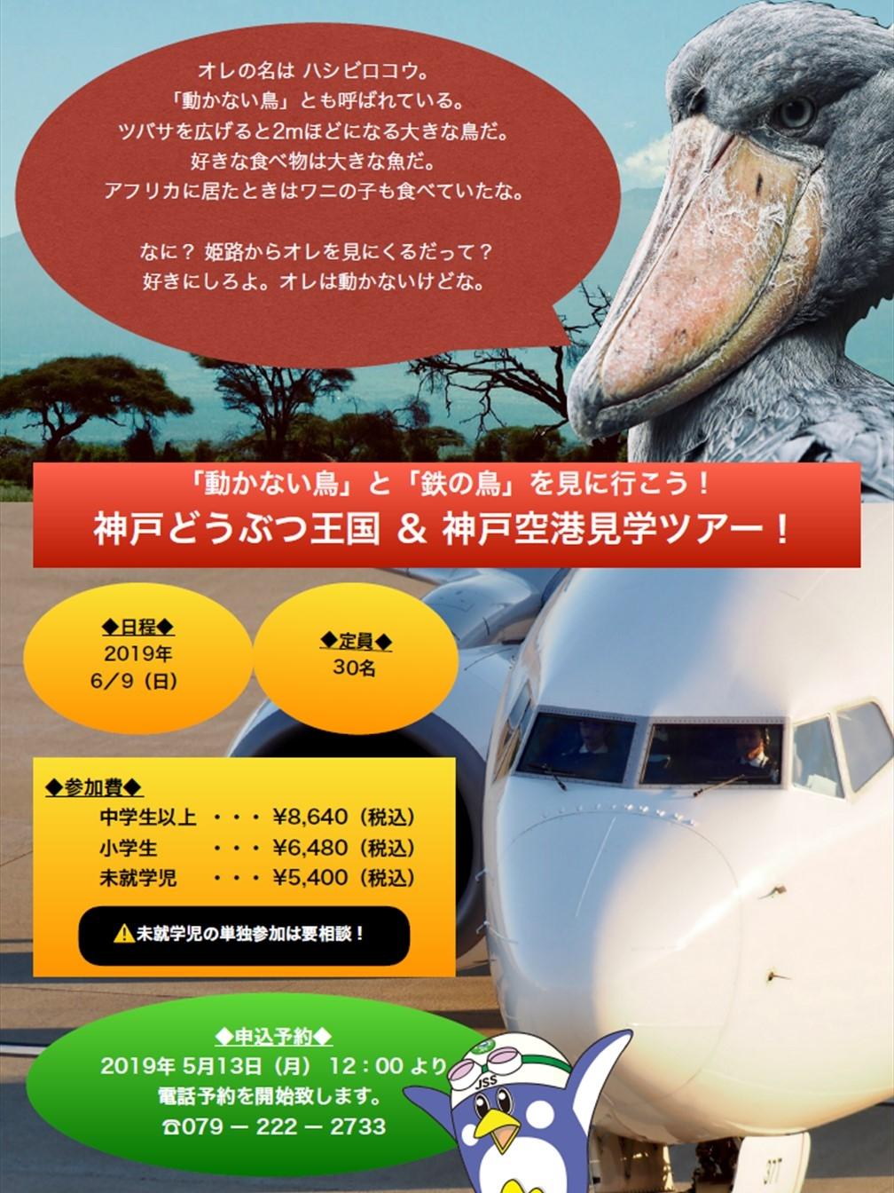 春の遠足「神戸どうぶつ王国&神戸空港」