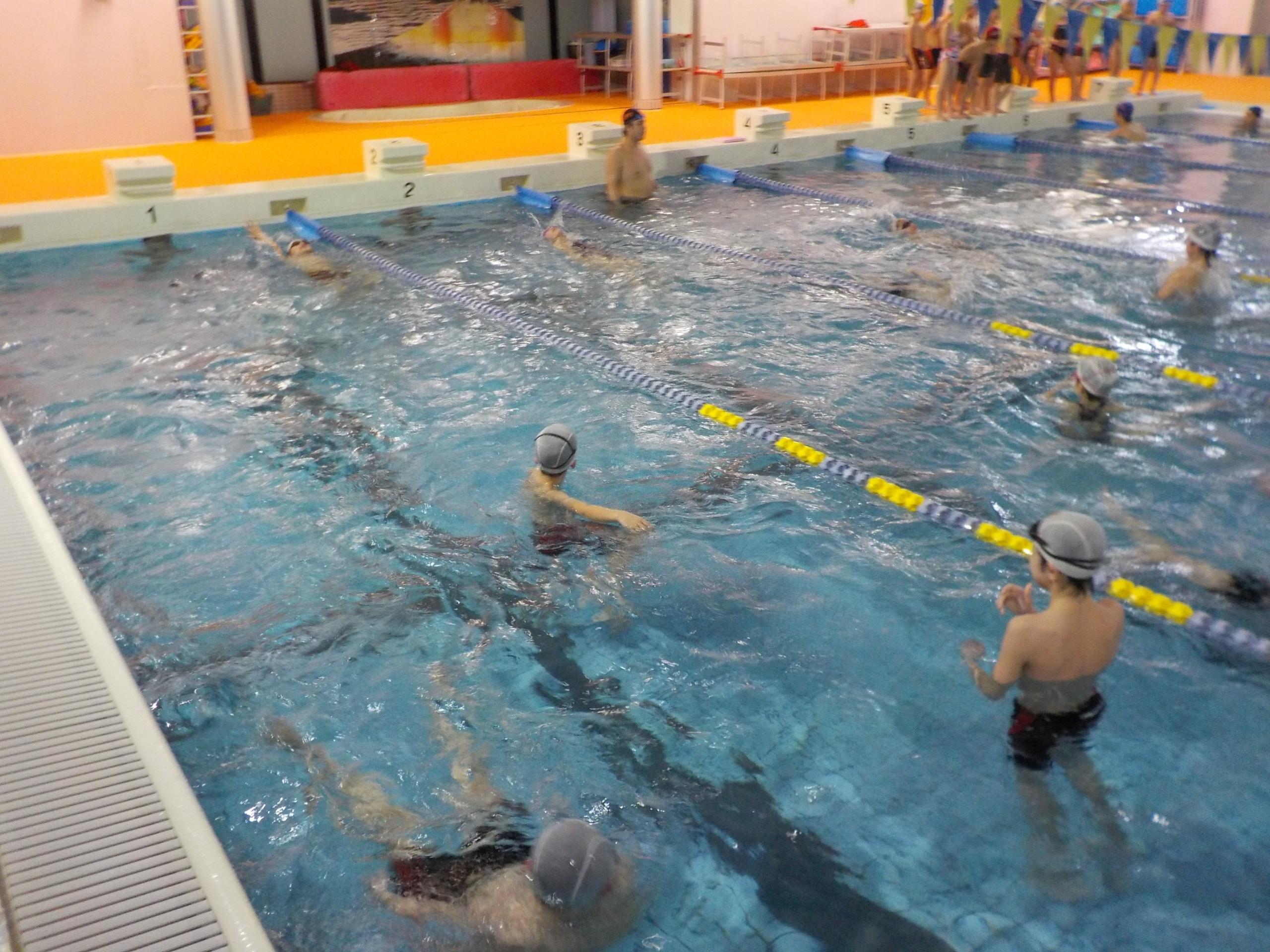 2020年度 第3回泳力認定会 開催 ( * ^ – ^ * ) 画像