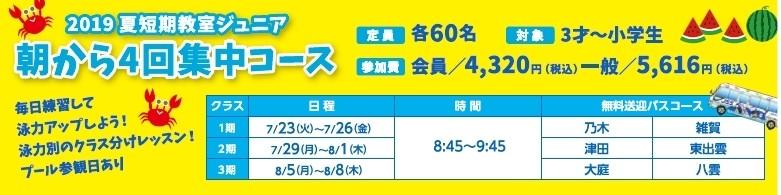 2019夏朝短
